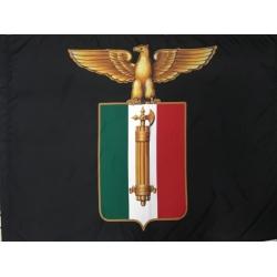 FLAGS B31