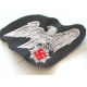 PATCHES T10