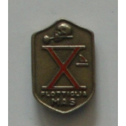 PINS AND BADGES X86